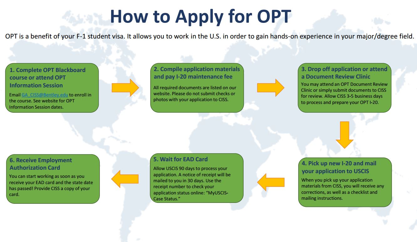 Optional Practical Training (OPT) | Center for International