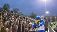 flex the falcon at a football game in front of a crowd